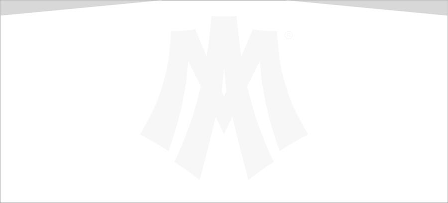 Amsterdam Marshals webpage